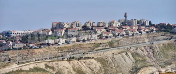 Israeli Settlement Campaign Undermines Peace-Press Release