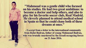 Mahmoud Badran1